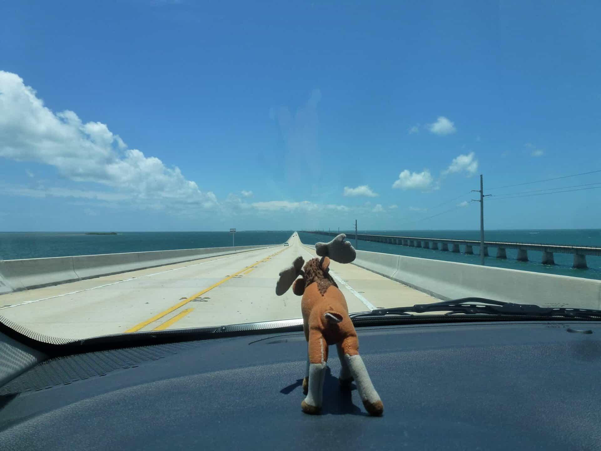 Insurance penalties in Florida