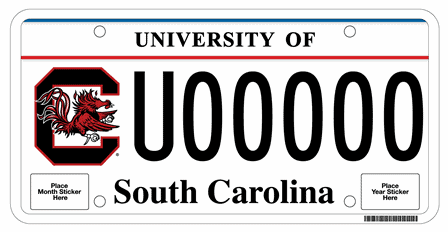 South Carolina DMV Waiver Process – Select Insurance Group