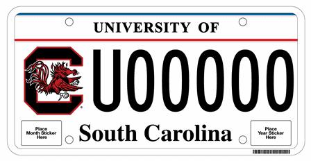 South Carolina DMV Waiver Process